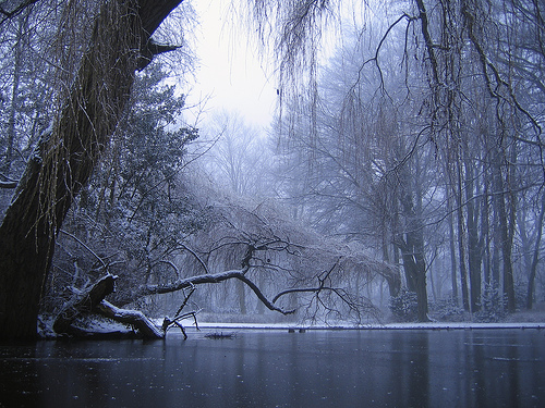 フリー画像| 自然風景| 湖の風景| 雪景色| 森林/山林|