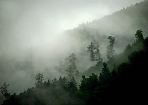 フリー画像| 自然風景| 山の風景| 霧/靄|