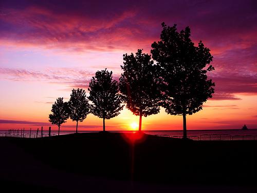 フリー画像|自然風景|樹木の風景|夕日/夕焼け/夕暮れ|