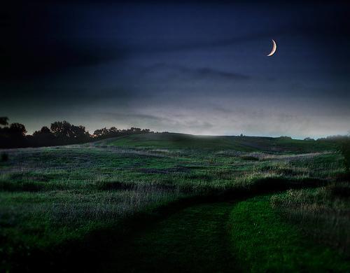 フリー画像| 自然風景| 月の風景| 夜景| 丘の風景| 草原の風景| 夜空の風景|