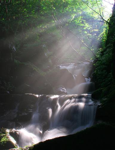 フリー画像| 自然風景| 滝の風景| 森林/山林| 太陽光線| 木漏れ日| 河川の風景|