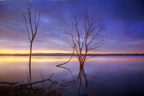 フリー画像| 自然風景| 湖の風景| 樹木の風景| アメリカ風景| カンザス州|