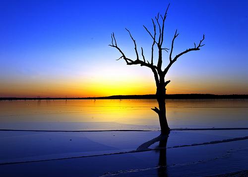 フリー画像| 自然風景| 湖の風景| 朝日/朝焼け| 樹木の風景| アメリカ風景| カンザス州|