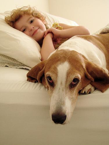 フリー画像| 動物写真| 哺乳類| イヌ科| 犬/イヌ| バセットハウンド| 人物写真| 子供ポートレイト| 少女/女の子|