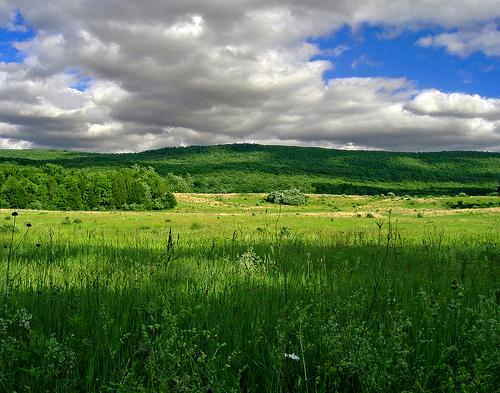 フリー画像| 自然風景| 草原の風景| 雲の風景|