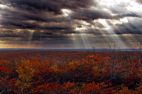 フリー画像| 自然風景| 空の風景| 雲の風景| 太陽光線| 紅葉の風景| 樹木の風景|