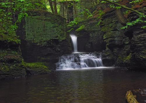 フリー画像| 自然風景| 滝の風景| 森林/山林| 緑色/グリーン| アメリカ風景| ペンシルベニア州|