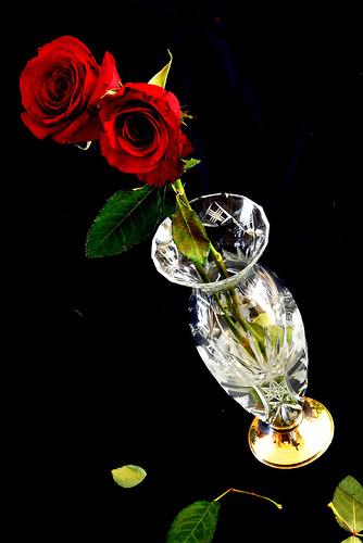 フリー画像| 花/フラワー| 薔薇/バラ| 花瓶| レッド/花|
