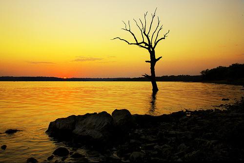 フリー画像| 自然風景| 樹木の風景| 湖の風景| 橙色/オレンジ| 夕日/夕焼け/夕暮れ|