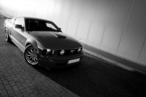 フリー画像| 自動車| スポーツカー| フォード/Ford| フォード マスタング| 2005 Ford Mustang| モノクロ写真| アメ車|