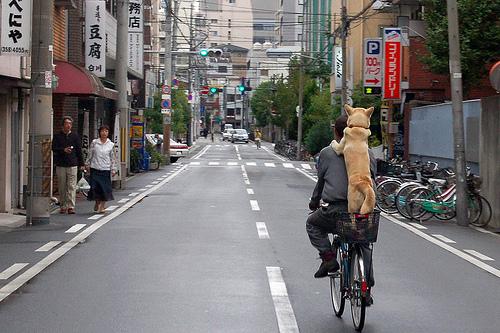 フリー画像| 動物写真| 哺乳類| イヌ科| 犬/イヌ| 柴犬/シバイヌ| 自転車| 街角の風景| 日本風景|   フリー素材|