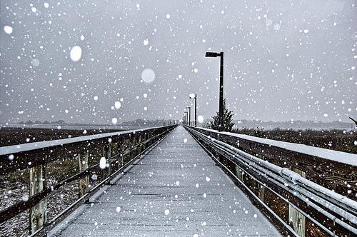 フリー画像| 人工風景| 道の風景| 粉雪| ドック/船渠| アメリカ風景| ノースカロライナ州| 雪景色|    フリー素材|