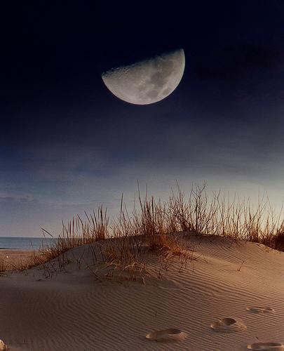 フリー画像| 自然風景| 空の風景| 月の風景| 夜空の風景| ビーチ/海辺|      フリー素材|