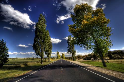 フリー画像| 人工風景| 道の風景| 樹木の風景| HDR画像| オーストラリア風景|      フリー素材|