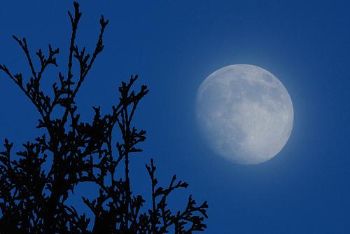 フリー画像| 自然風景| 月の風景| 空の風景| 夜景| 青色/ブルー|