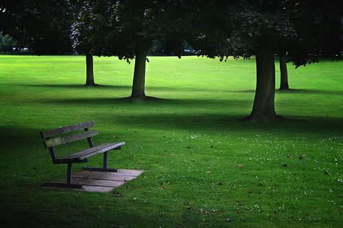 フリー画像| 人工風景| ベンチ| 樹木の風景| 緑色/グリーン|