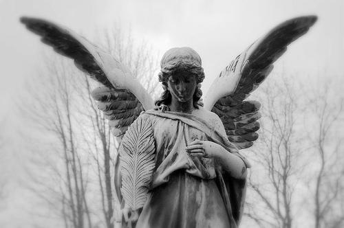 フリー画像| 人工風景| 彫刻/彫像| 天使/エンジェル| モノクロ写真|