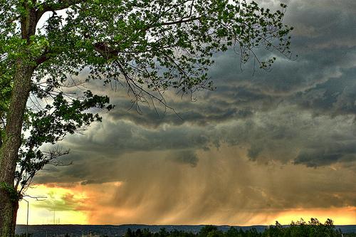 フリー画像| 自然風景| 空の風景| 雲の風景| 雨雲の風景| 樹木の風景|