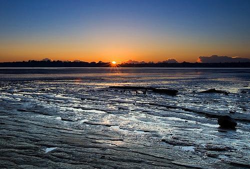 フリー画像| 自然風景| 海の風景| 朝日/朝焼け| 水平線/地平線| ビーチ/海辺| ニュージーランド風景| オークランド|
