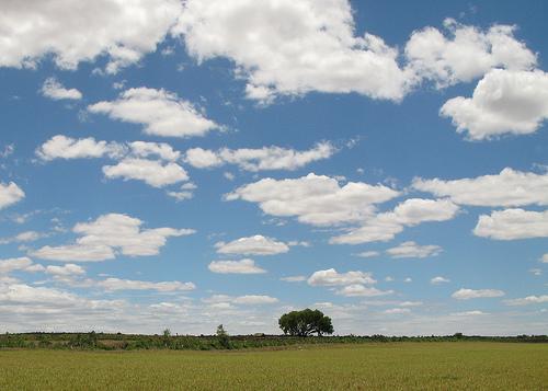 フリー画像| 自然風景| 空の風景| 平原の風景| 樹木の風景| 雲の風景| マダガスカル風景|