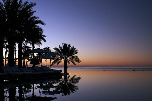 フリー画像| 自然風景| ビーチ/海辺| 海の風景| 樹木の風景| 朝日/朝焼け| メキシコ風景| ロスカボス|