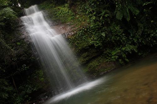 フリー画像| 自然風景| 滝の風景| メキシコ風景| プエブラ州|