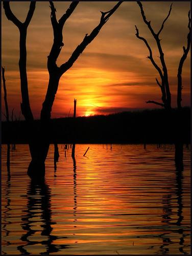 フリー画像| 自然風景| 夕日/夕焼け/夕暮れ| 樹木の風景| シルエット| 湖の風景| アメリカ風景| オクラホマ州| 橙色/オレンジ|