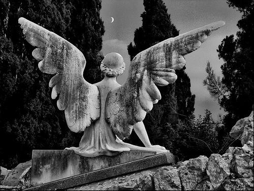 フリー画像| 人工風景| 彫刻/彫像| 天使/エンジェル| 月の風景| モノクロ写真|      フリー素材|