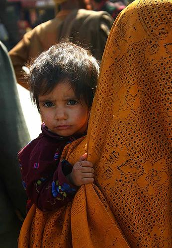 フリー画像| 人物写真| 子供ポートレイト| 外国の子供| 少女/女の子| インド人| カシミール|     フリー素材|