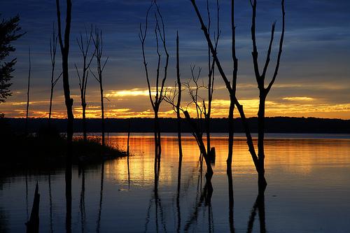 フリー画像  自然風景  湖の風景  夕日/夕焼け/夕暮れ  樹木の風景        フリー素材 