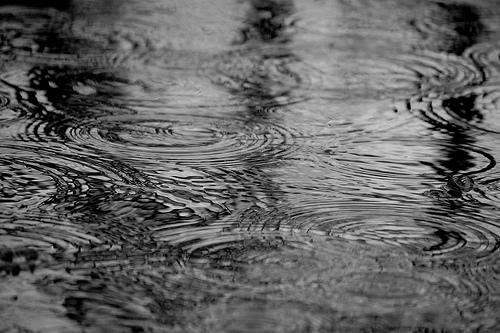 フリー画像| 人工風景| 雨の風景| 水たまり| 波紋|       フリー素材|