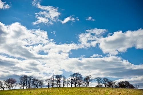 フリー画像| 自然風景| 空の風景| 雲の風景| 樹木の風景|       フリー素材|