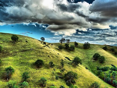 フリー画像  自然風景  丘の風景  樹木の風景  HDR画像        フリー素材 
