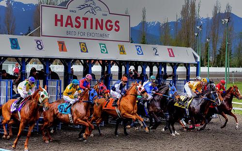 フリー画像| 動物写真| 哺乳類| 馬/ウマ| 競馬| 騎手| 人物写真|     フリー素材|