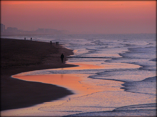 フリー画像| 自然風景| 海の風景| ビーチ/海辺| 夕日/夕焼け/夕暮れ| ベルギー風景|      フリー素材|