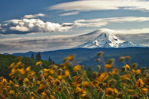 フリー画像| 自然風景| 山の風景| 花畑| アメリカ風景| オレゴン州| 雲の風景|     フリー素材|