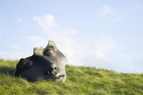フリー画像| 人工風景| 彫刻/彫像| オブジェ| Igor Mitoraj/イゴール・ミトライ| オランダ風景| 草原の風景|     フリー素材|