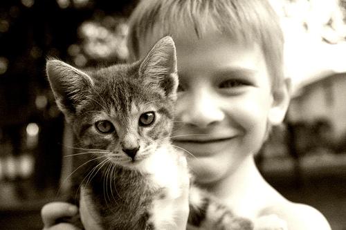 フリー画像| 動物写真| 哺乳類| ネコ科| 猫/ネコ| 子猫| 子供ポートレイト| 外国の子供| 少年/男の子| モノクロ写真|  フリー素材|